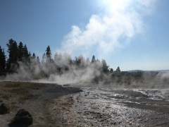 The average temperature of the geysers in Yellowstone is 93 celcius which is enough to scald a person