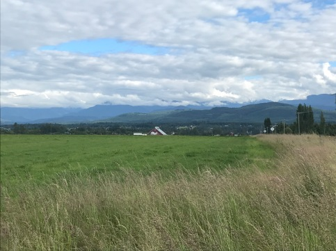 Beautiful scenery on the way to Dungeness County Park from Sequim