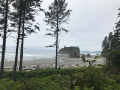 The famous beach on the Washington Coast. There was a lot of people there, but it was worth it