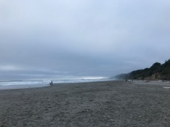 The Pacific coast on Washington has lots of great beaches like this